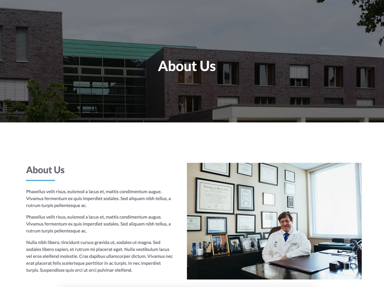 Header About Us page - MediCenter Theme