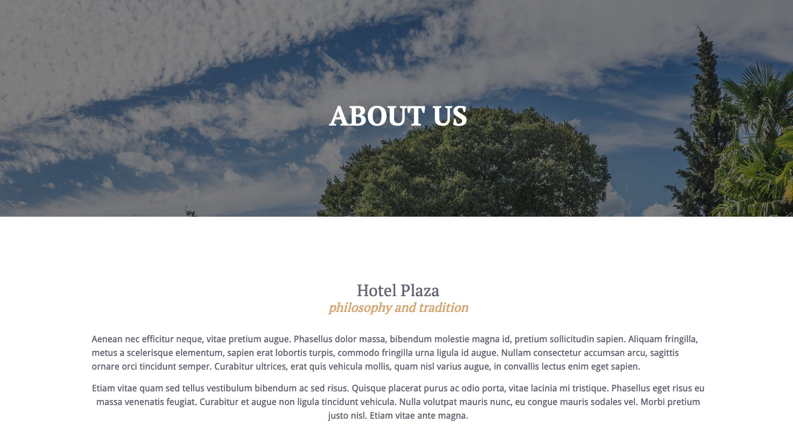 Header About Us page - Plaza Theme